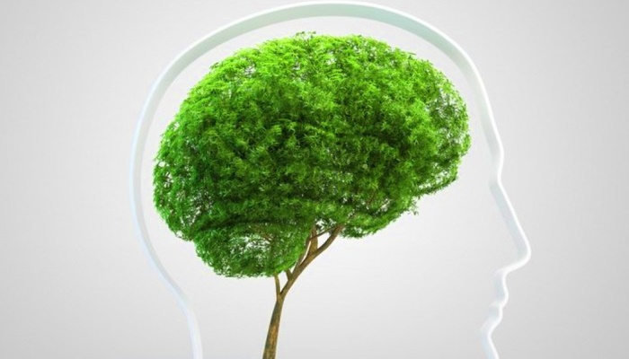Современные эко-привычки